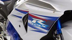 Suzuki GSX-R 1000 SE - Immagine: 1