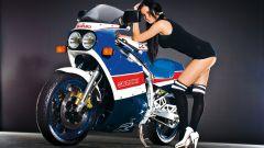 Suzuki GSX-R 30th Anniversary - Immagine: 1