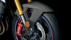 Suzuki GSX-S1000 Web Edition 2021: il parafango anteriore è in carbonio
