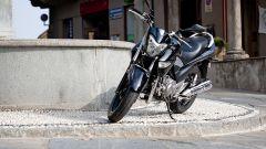Suzuki Inazuma, il nostro video - Immagine: 11