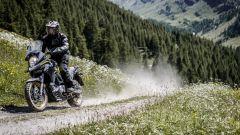 Suzuki SV 650 Rally: l'acerrima rivale sarebbe proprio la