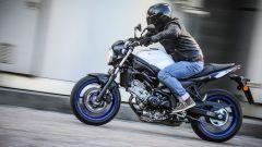 Suzuki SV650 ABS, la livrea bianca con striscia blu ci ha fatto innamorare