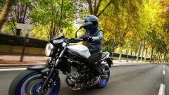 Suzuki SV650 - Immagine: 12