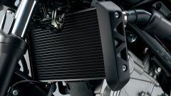 Suzuki SV650 - Immagine: 60
