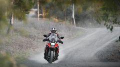 Suzuki V-Strom 1050: la tecnologia non le fa più paura. La prova - Immagine: 7