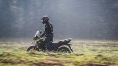 Suzuki V-Strom 250: un passaggio in sterrato