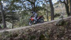 Riaprono le iscrizioni al Suzuki V-Strom Tour 2020 - Immagine: 4
