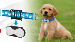 Techmade T-Pets - Immagine: 1