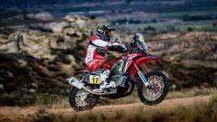 Termignoni firma gli scarichi delle Honda per il Dakar Rally - Immagine: 4