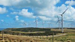 Tesla costruirà in Australia la batteria al litio più grande del mondo