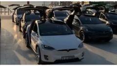 Tesla Model X, lo stormo è pronto a spiccare il volo