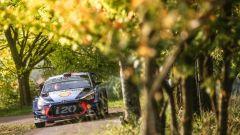 Thierry Neuville davanti a tutti nello Shakedown del Rally di Germania
