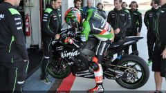 Tom Sykes #66 - Immagine: 11