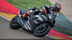 Tom Sykes #66 - Immagine: 14