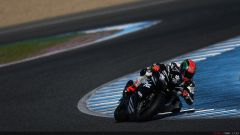 Tom Sykes #66 - Immagine: 18