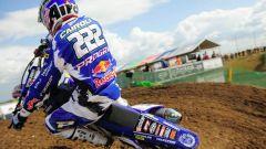 Tony Cairoli sportivo italiano del 2013 - Immagine: 3