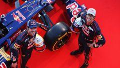 Toro Rosso STR7 - Immagine: 10