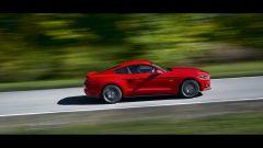 Mustang, il segreto è nel nome - Immagine: 5