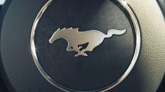 Mustang, il segreto è nel nome - Immagine: 1
