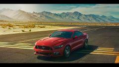 Mustang, il segreto è nel nome - Immagine: 8