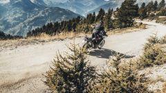 Triumph approda nel motocross ed enduro. Obiettivo Dakar? - Immagine: 4