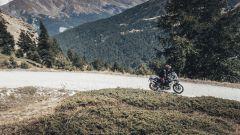 Triumph approda nel motocross ed enduro. Obiettivo Dakar? - Immagine: 6