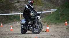 Triumph Adventure Experience: l'off-road secondo Triumph - Immagine: 7