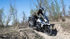 Triumph Adventure Experience: l'off-road secondo Triumph - Immagine: 11