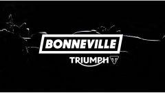 Triumph Bonneville 2016 - Immagine: 6