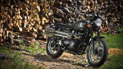 Triumph Classiche 2012 - Immagine: 75