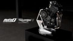Triumph, dal 2019 sarà motore della Moto2 - Immagine: 9