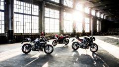 Triumph, dal 2019 sarà motore della Moto2 - Immagine: 13