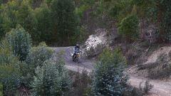 Triumph Scrambler 1200 nei boschi portoghesi