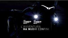 Nuova Triumph Tiger 900 2020: ecco come cambia e quando arriva  - Immagine: 1
