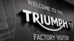 Triumph Visitor Experience