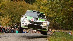 Umberto Scandola e Guido D'Amore - Ford Fiesta R5