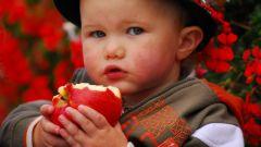 Val di Non: me la guido e... mela godo - Immagine: 8