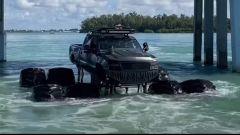 Video: il pick-up che si fa il bagno nel Golfo del Messico