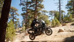 Visuale dinamica della Harley-Davidson Pan America