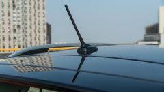Volkswagen T-Cross: dettaglio tetto
