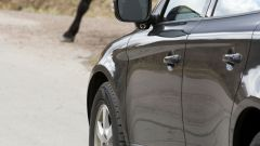 Volvo Animal Detection - Immagine: 7