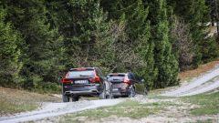 Volvo Cross Country V40 e V90: alla ricerca di Giulia - Immagine: 21