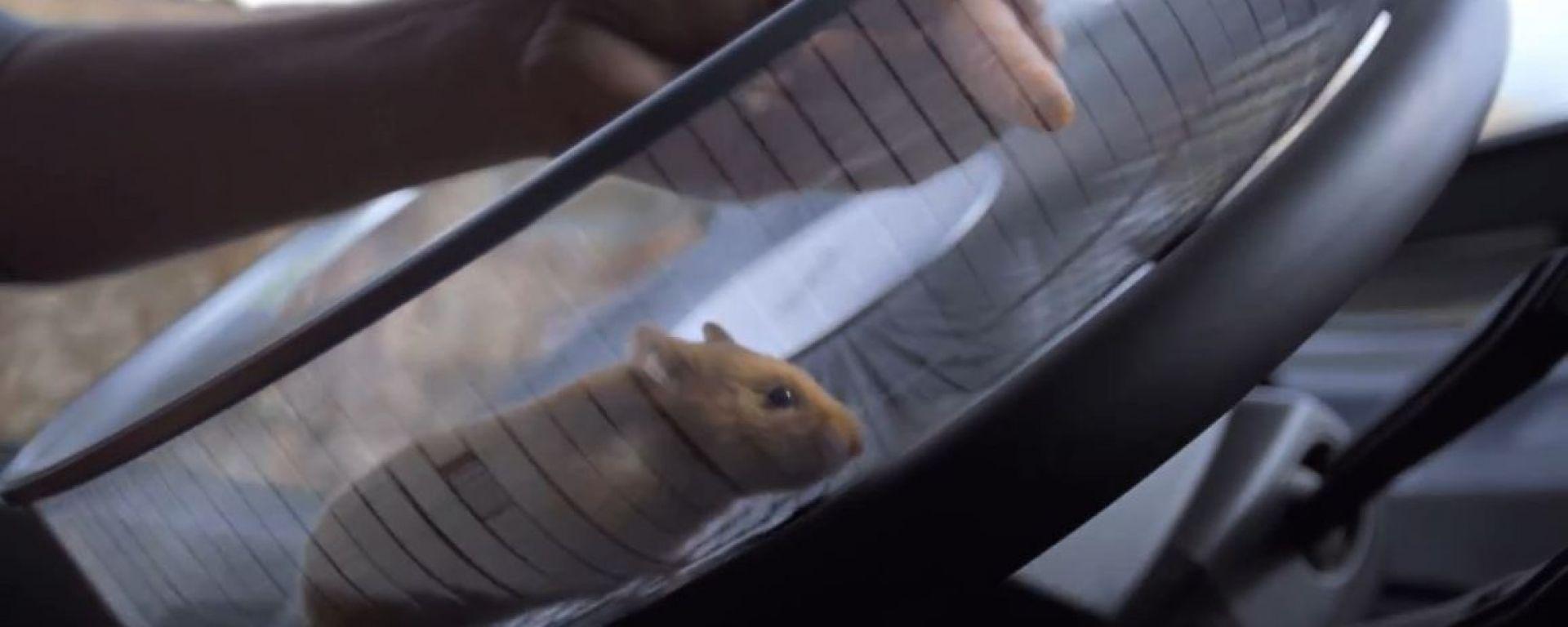 "Volvo Trucks FMX: ""The Hamster Stunt"""
