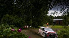 WRC 2018: le Citroen C3 all'attacco del Rally di Finlandia - Immagine: 3