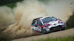 Sebastien Ogier è campione del mondo WRC 2018 con Ford  - Immagine: 6