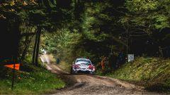 WRC 2018: Suninen e Ford in testa allo Shakedown nel Rally del Galles - Immagine: 3