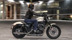 XV950 vs 883 Iron VN 900 Custom  - Immagine: 24