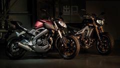 Yamaha MT-125 - Immagine: 16