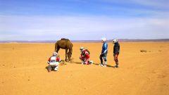 In Marocco con la Yamaha Super Ténéré - Immagine: 114