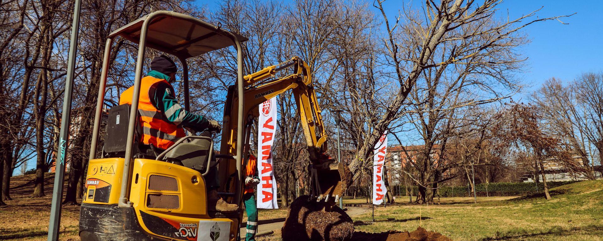 Yamaha Treecity: il bosco ai giardini Lucarelli prende forma